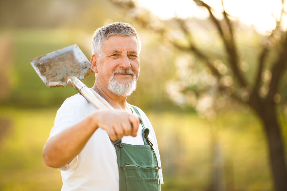 Order Landscaping Materials for Fall Yard Projects