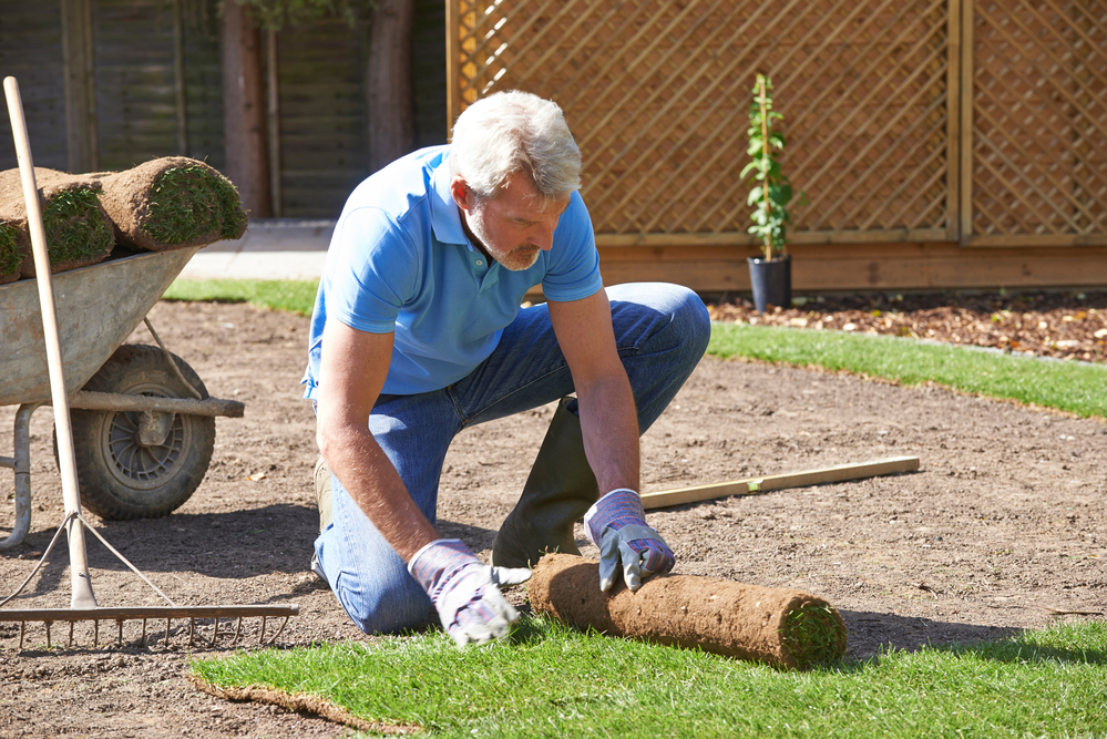 Add Utah Sod to Increase Your Home's Value