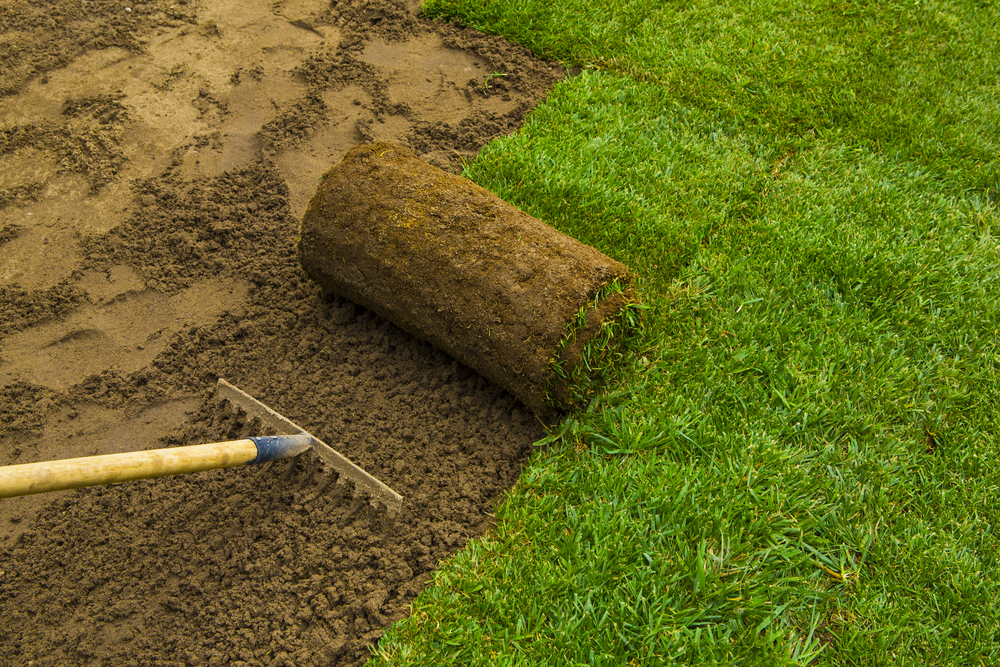 Utah Sod Installation Tips from The Dirt Bag