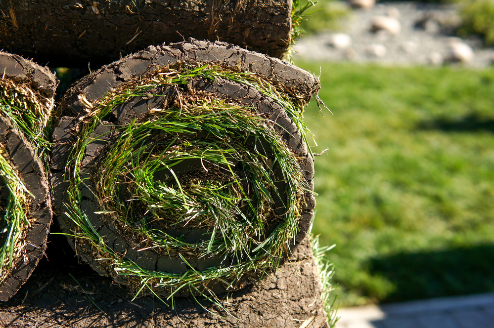 How to plan for your Utah sod delivery