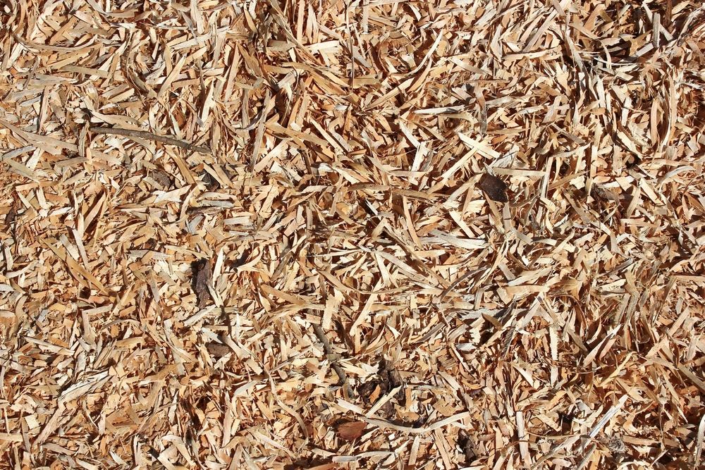 How to care for playground wood chips