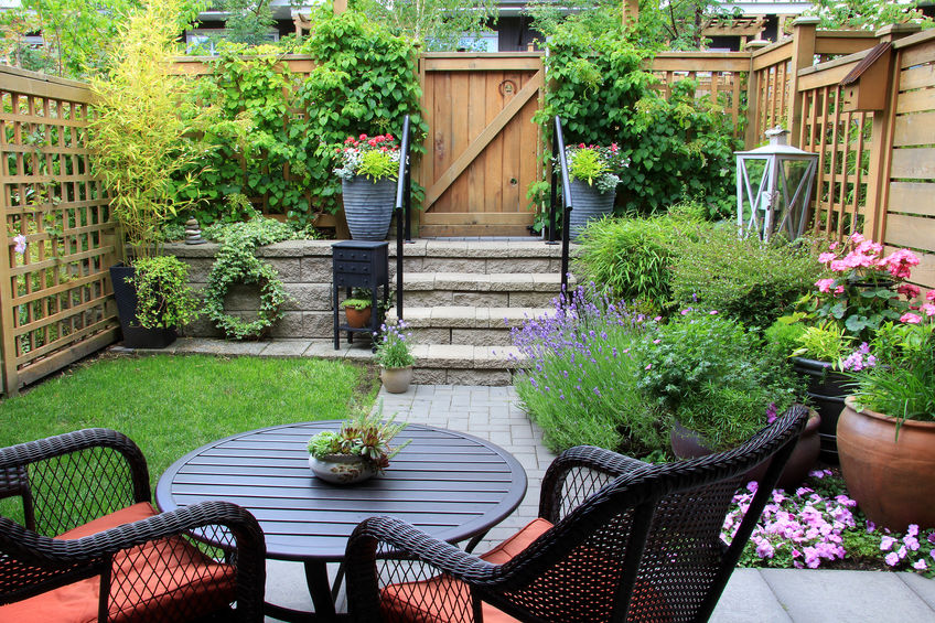 Backyard Perennial Arboretum